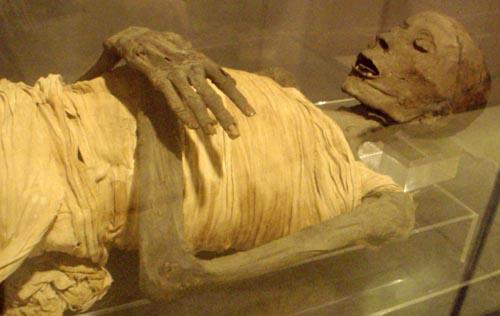 Интересные факты о мумиях, которые вы не слышали раньше