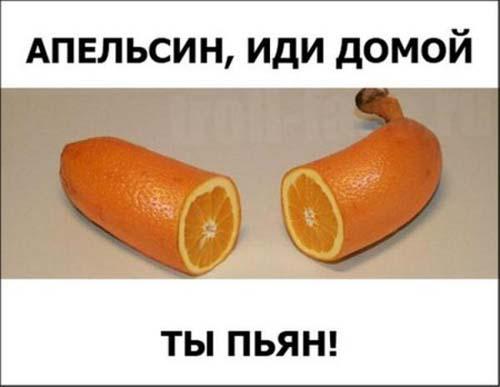 Новый год - мандарин мне в рот. Лучшие демотиваторы и смешные картинки про мандарины